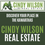 Cindy Wilson – Website